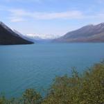 Jezioro Kenai zasilane lodowcami (fot.Sebastian R. Bielak)