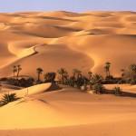 22 Oman, pustynia, skraj oazy