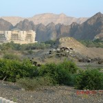 38 Oman Muscat hotel Al Buston